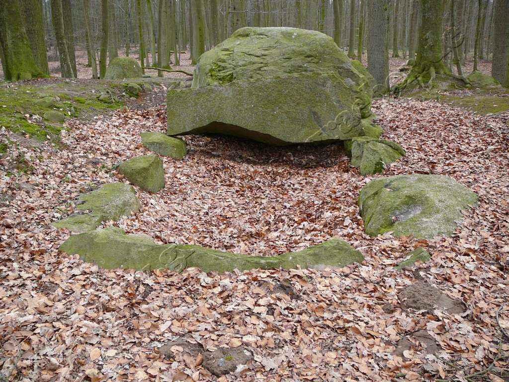 Großsteingrab Forst Poggendorf 3