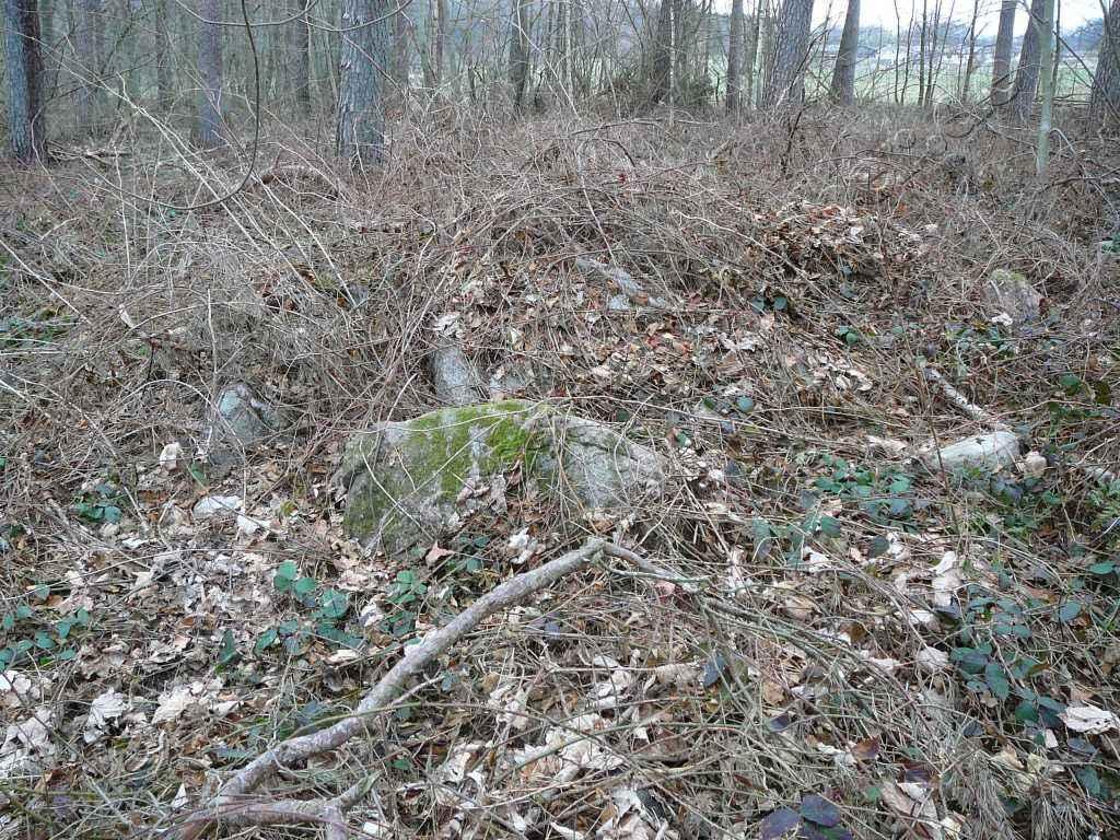 Großsteingrab Pustow 7