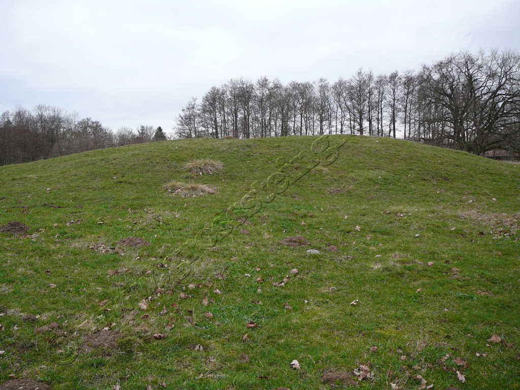 Großsteingrab Pustow 11