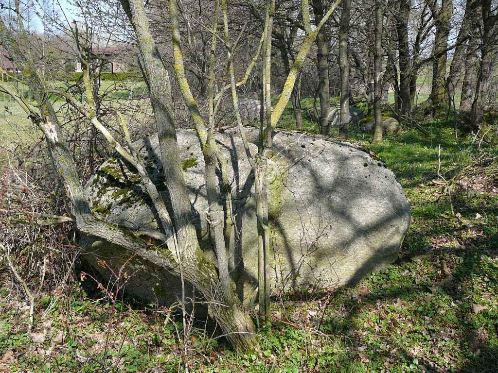 Großsteingrab Pustow 12