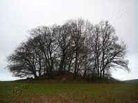 Hügelgrab Nistelitz