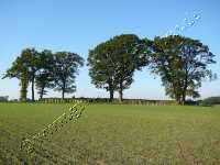 Karlsminde Langbett
